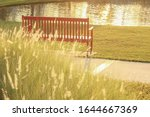 Small photo of Image of vintage bench at the public park with trees lawn and lake on the beautiful bright and shiny twilight sunlight background imply loneliness life.
