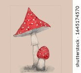 Two Amanita Mushrooms With Red...