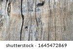 crack wood tree surface texture.   Shutterstock . vector #1645472869