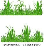 vector illustration of grass ... | Shutterstock .eps vector #1645551490