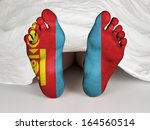 feet with flag  sleeping or... | Shutterstock . vector #164560514