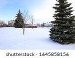 a perfect neighborhood along a...   Shutterstock . vector #1645858156