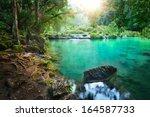 rain forest national park in...   Shutterstock . vector #164587733