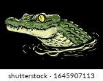 baby crocodile head vector...   Shutterstock .eps vector #1645907113