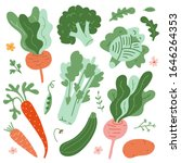 illustrations of vegetables ... | Shutterstock .eps vector #1646264353