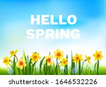 hello spring floral nature... | Shutterstock .eps vector #1646532226