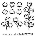 cotton set. collection cotton... | Shutterstock .eps vector #1646727559
