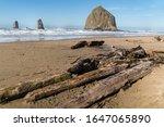 Haystack Rock  Ocean Beach ...