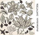 vector set of calligraphic... | Shutterstock .eps vector #164747306