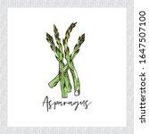 fresh vegetables illustration ... | Shutterstock .eps vector #1647507100