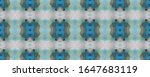 paintbrush aztec background. ... | Shutterstock . vector #1647683119