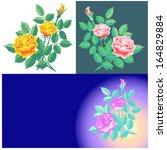 roses    Shutterstock .eps vector #164829884