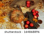 pumpkin and apples with bark... | Shutterstock . vector #164868896