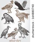 eagles   vultures 1 | Shutterstock .eps vector #164880740