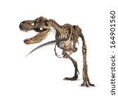Tyrannosaurus Skeleton Isolate...