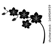 orchid branch silhouette vector ... | Shutterstock .eps vector #164904959