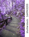 Imagine Purple Forest With Stair
