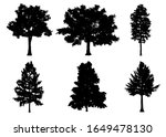 beautiful collection tree... | Shutterstock . vector #1649478130