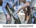 Small photo of Farrier fits hot horseshoe onto a horse hoof. Smoke blowing from hot horseshoe on hoof. Farrier changing a horseshoe. Blacksmith working with a horse.