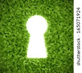 Green Hedge With Keyhole....
