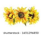 Watercolor Sunflower  Hand...