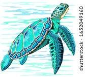 sea turtle turquoise oceanlife... | Shutterstock .eps vector #1652049160