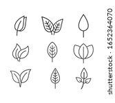 leaf line logo vector template... | Shutterstock .eps vector #1652364070
