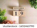 November 19  Natural Notebook...