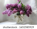 Bouquet Of Lilacs On A White...
