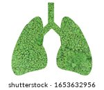 green forrest in human lung... | Shutterstock . vector #1653632956