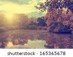 vintage autumnal impression | Shutterstock . vector #165365678