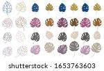 set of color monstera leaves.... | Shutterstock .eps vector #1653763603