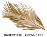 Dry Palm Leaf Isolated On White ...