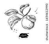 apple vector drawing. hand... | Shutterstock .eps vector #1654612990
