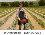 Smiling Male Seasonal Worker In ...