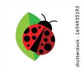 Ladybug Or Ladybird Icon...