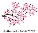Cherry Blossom Spring Flower...