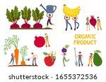 organic production cartoon... | Shutterstock .eps vector #1655372536