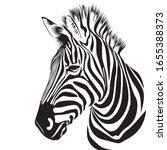 zebra animal illustration ... | Shutterstock .eps vector #1655388373