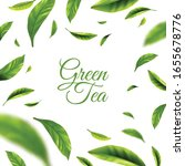 green tea background with frame ... | Shutterstock .eps vector #1655678776