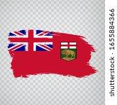 flag of manitoba brush strokes. ...