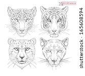 vector set of hand drawn wild... | Shutterstock .eps vector #165608594