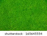 Top View Green Moss  For...