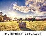 Swedish Farming