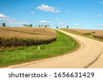 Curve in country road between fields of corn (maize), with a small farmhouse on hilltop, early in October, southern Wisconsin, USA, with digital oil-painting effect, for rural and agricultural themes