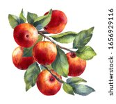 Watercolor Illustration Of Red...