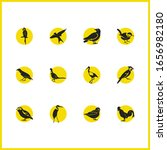 ornithology icons set with...