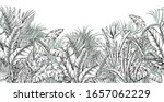 seamless border with tropical... | Shutterstock .eps vector #1657062229
