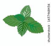 stock vector illustration of... | Shutterstock .eps vector #1657468456