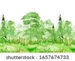 Summer  Landscape  Forest  Park....